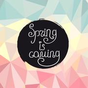Handwriting inscription Spring is coming Stock Illustration