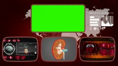 Kidney - Medical Monitor - Advanced Research - World - red 03 - stock footage