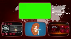 Kidney - Medical Monitor - Advanced Research - World - red 01 Stock Footage