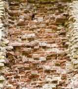 Old brick wall - stock photo
