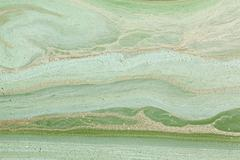 green swamp, close-up - stock photo