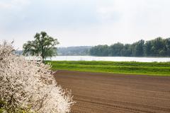 Fertile land on the shores of lake Stock Photos