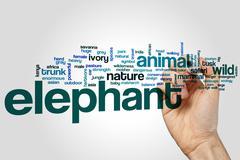 Elephant word cloud concept Stock Photos