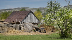 Dog basking in the sun, near an old barn in the countryside - stock footage