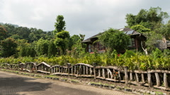Thailand Garden Time Lapse Stock Footage