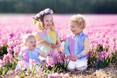 Three children playing in beautiful hyacinth flower field. - stock photo