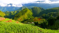 View of valley with green rice terraces, mountains and clouds. Sapa, Vietnam. 4K Stock Footage