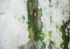 Abstract grunge texture Stock Photos