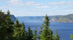 High angle in the trees showing large body of water and mountains in the back - stock footage