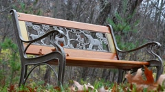 A children's park bench with Oak leaves in the Autumn season. Stock Footage