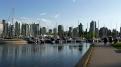 People jogging in the Stanley park - stock footage