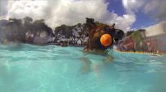 Dog swimming in pool. German Shepherd retrieving ball. Slow motion. - stock footage