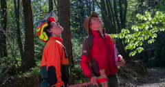 Two loggers are talking about something in a forest - stock footage