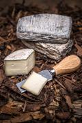 A farmstead cheese - stock photo
