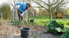 gardener removes weeds in garden - stock footage