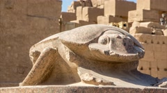Scarab in Luxor Temple in Egypt Stock Footage