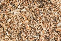 wood mulch - stock photo
