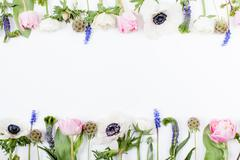 Spring flowers, tulips, anemones, cloves and buttercups in two rows Stock Photos
