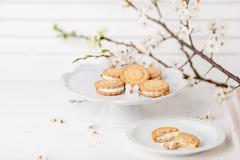 Cookies on white plate with blossom plum tree - stock photo