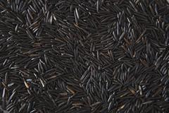 Full frame shot of wild rice - stock photo