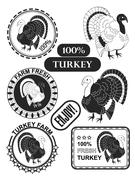Set of premium turkey meat labels and stamps. Vector Stock Illustration