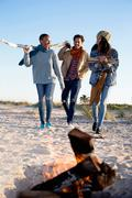 Three friends on beach, gathering drift wood for camp fire Stock Photos