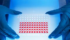 96 well plate for PCR processing, microbiological laboratory - stock photo