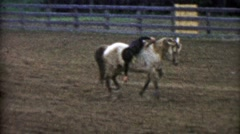 1955: Rodeo comedy routine horse and man fall down and play dead. - stock footage