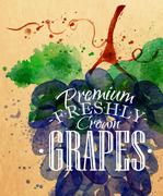 Poster grapes Stock Illustration