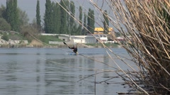 Athletes train kayaking in middle of river with a view of beautiful beach Stock Footage