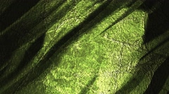Grunge green moving background Stock Footage