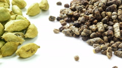 Cardamom seeds and pods tracking shot. Stock Footage