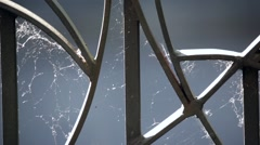 Spider web sewn onto a wrought iron gate beaten by wind - stock footage