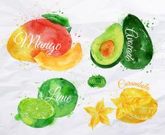 Exotic fruit watercolor mango, avocado, carambola, lime - stock illustration