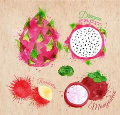 Exotic fruit watercolor dragon fruit, rambutan, mangosteen in kraft - stock illustration