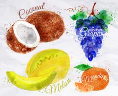 Fruit watercolor coconut, melon, mandarin, dark grapes kraft Stock Illustration