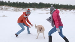 walk on the beach playing with a dog - stock footage