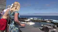 Madeira north shore lava rock pools with tourists Stock Footage
