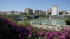 Seville flowers and Guadalquivir River Stock Footage