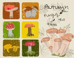 Vintage poster with autumn plants and fungus. Stock Illustration