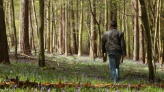 Man walking in bluebell flower wood Stock Footage
