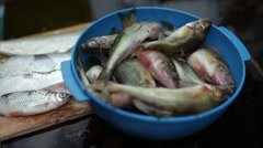 Freshly caught fish ruff Stock Footage