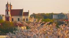 Lithuania, Vilnius cityscape on sunset with blossoming sakura, establishing shot Stock Footage