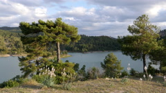 Spain Serrania de Cuenca mountain lake with pines and flowers Stock Footage