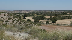 Spain Aragon landscape with fields and trees Stock Footage