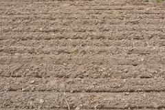 plowed land for planting - stock photo