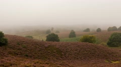 Time lapse morning fog at the Posbank in Rheden Stock Footage