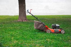 Lawnmower on grass in the garden, tree and white wall on background, a lot of - stock photo