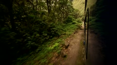 Train from Cusco to the Inca City Machu Picchu in a nice scenery - stock footage