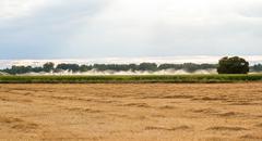 Sprinkler in Cornfields - stock photo